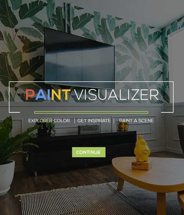 Paint Visualizer